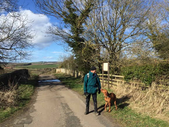 Sunshine and very strong winds, but none of the predicted showers on our walk today